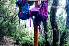 Trekking in Aspromonte - Wandern im Aspromonte