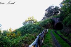 Ferrovia dismessa - Stillgelegte Eisenbahn
